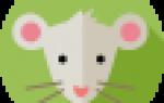 Рожденные по годам животных