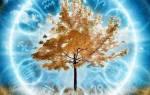 Дерево талисман по дате рождения