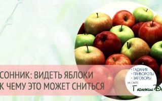 К чему снятся яблоки — значение сна яблоко по соннику