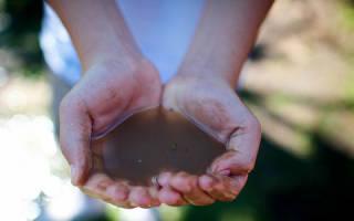 К чему снится упасть в грязную воду