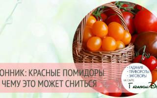 Сонник ванги помидоры