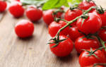 К чему снятся помидоры — толкование по надежным сонникам