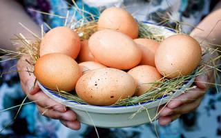 К чему снятся много куриных яиц мужчине