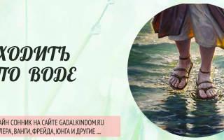 Сонник Ходить по воде  , к чему снится Ходить по воде женщине  , что означает увидеть Ходить по воде во сне