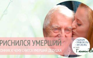 Приснился умерший дедушка живым: значение по соннику