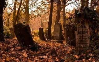 К чему снится кладбище и могилы для женщины по сонникам