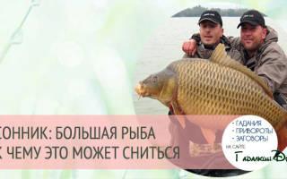 Поймать большую рыбу во сне: толкование по сонникам для женщин и мужчин