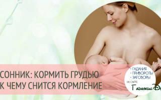 Сонник Кормить ребенка грудью  , к чему снится Кормить ребенка грудью женщине  , что означает увидеть Кормить ребенка грудью во сне