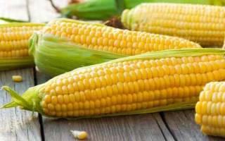 К чему снится кукуруза по сонникам Миллера Фрейда Ванга