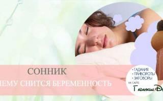 К чему снится   Беременность во сне — по 90 сонникам! Если видишь во сне Беременность что значит