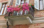 Сонник парень на балконе